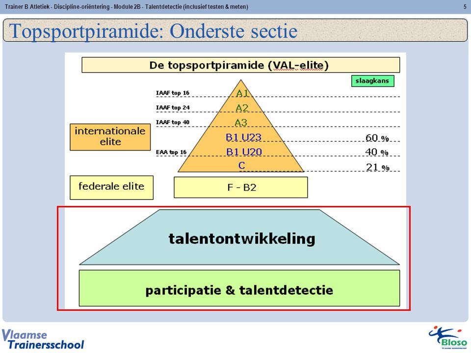 Topsportpiramide: Onderste sectie