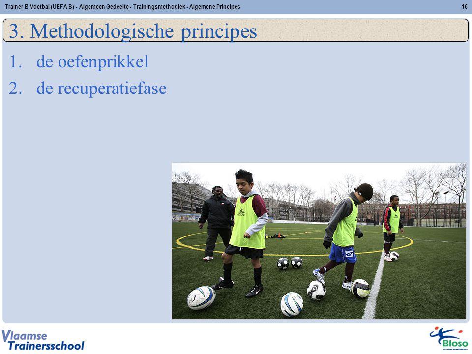 3. Methodologische principes