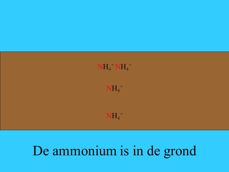De ammonium is in de grond