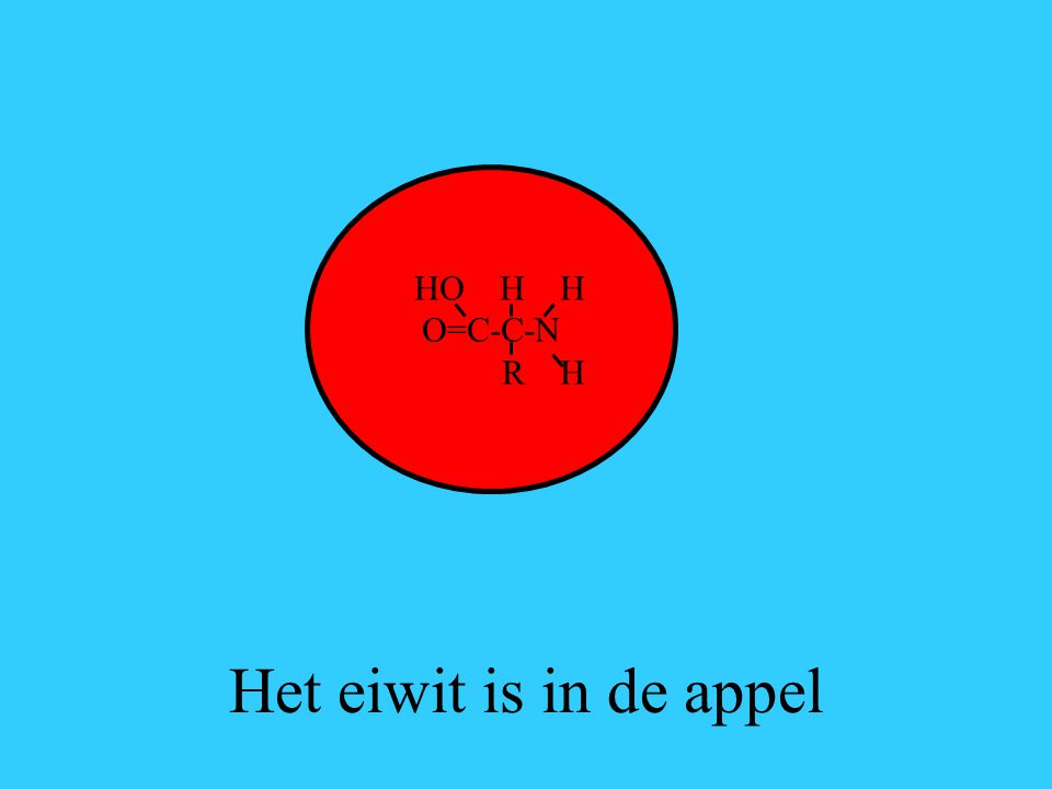 HO H H O=C-C-N R H Het eiwit is in de appel