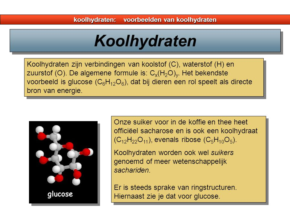 koolhydraten: voorbeelden van koolhydraten