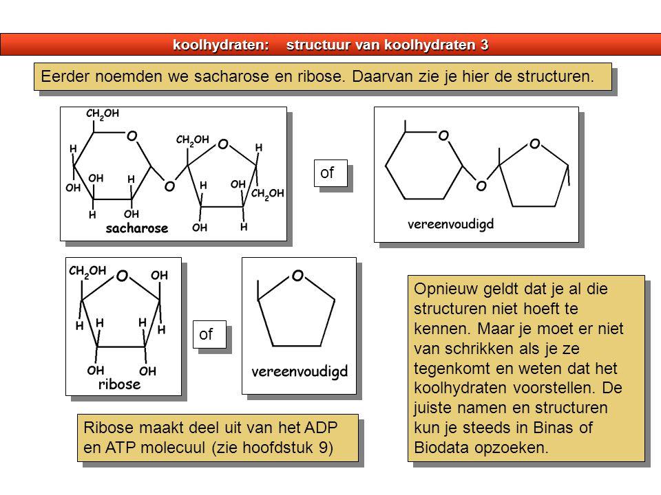 koolhydraten: structuur van koolhydraten 3