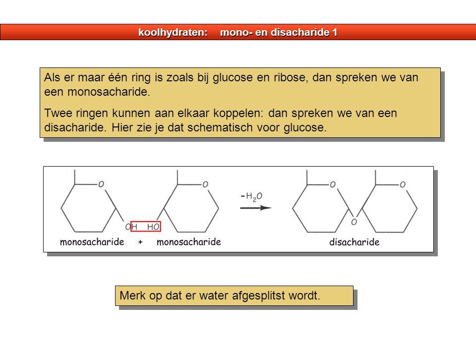 koolhydraten: mono- en disacharide 1