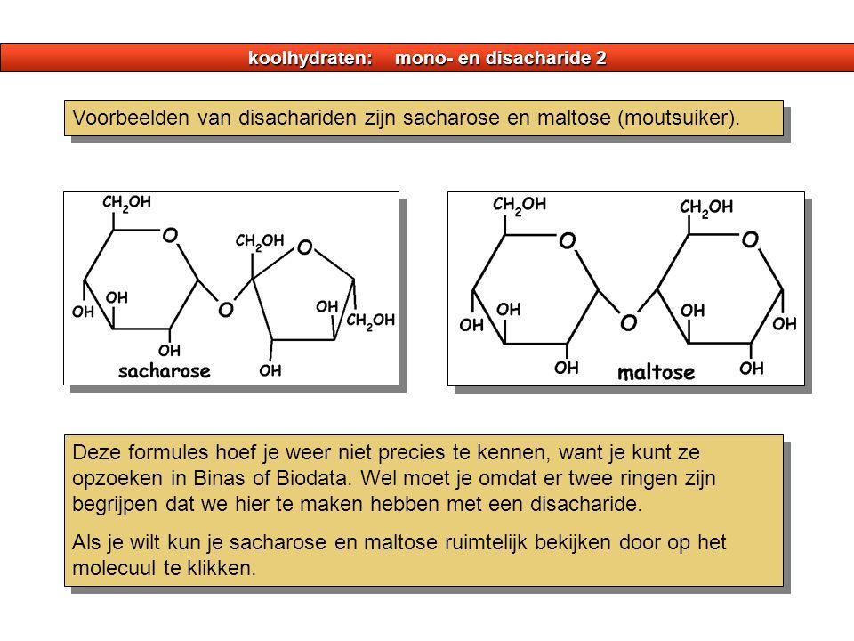koolhydraten: mono- en disacharide 2