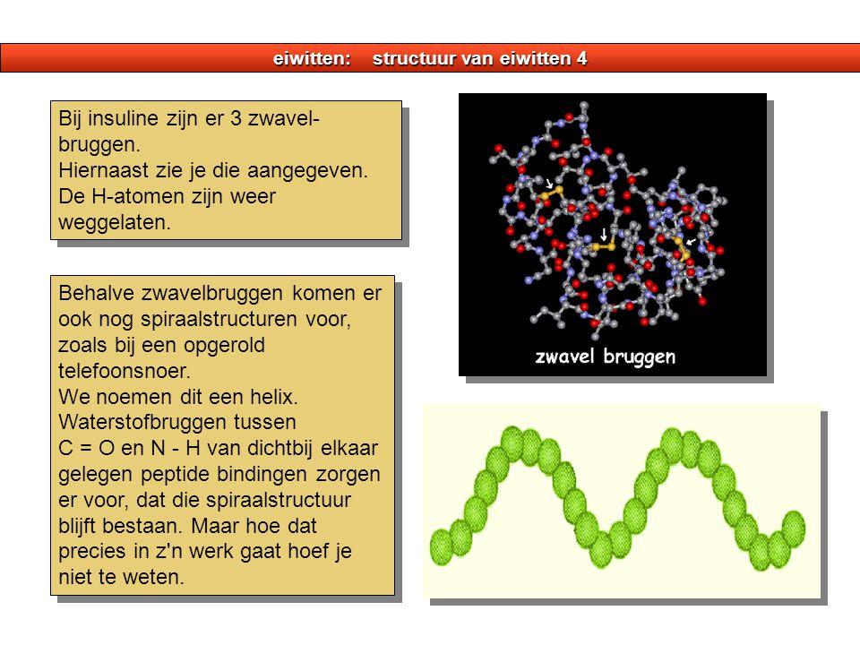 eiwitten: structuur van eiwitten 4