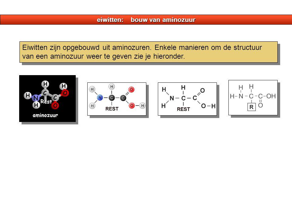 eiwitten: bouw van aminozuur