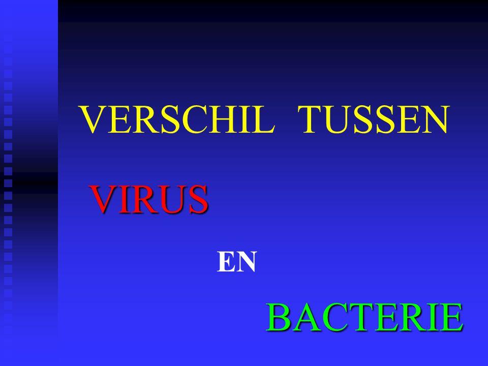 VERSCHIL TUSSEN VIRUS EN BACTERIE