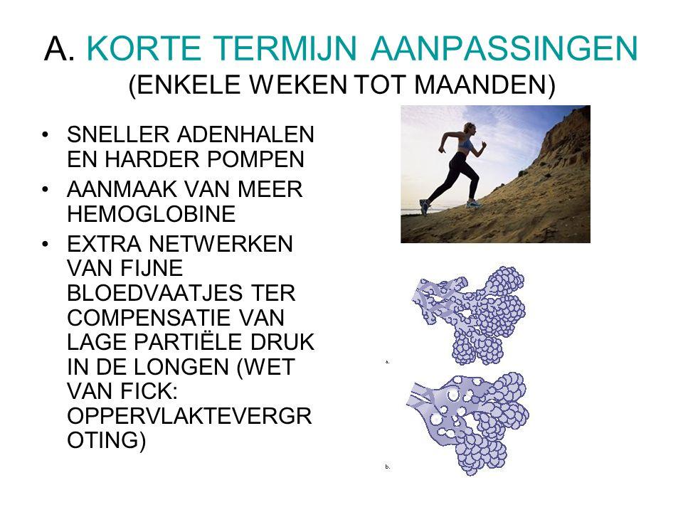 A. KORTE TERMIJN AANPASSINGEN (ENKELE WEKEN TOT MAANDEN)