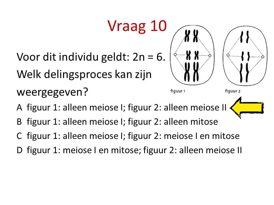Vraag 10 Voor dit individu geldt: 2n = 6. Welk delingsproces kan zijn