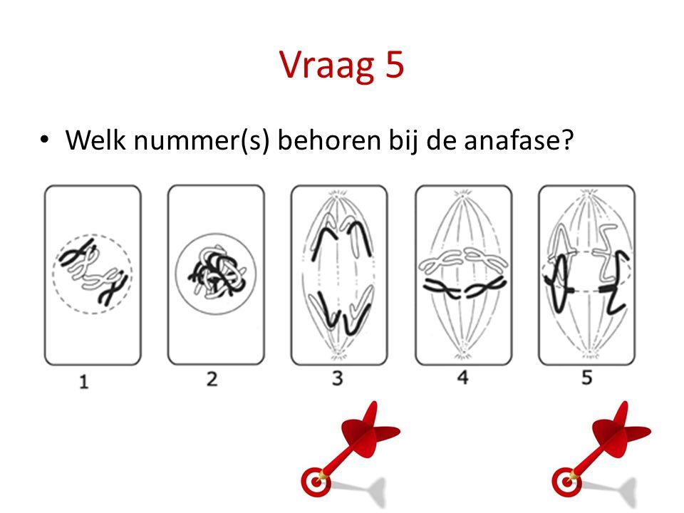 Vraag 5 Welk nummer(s) behoren bij de anafase