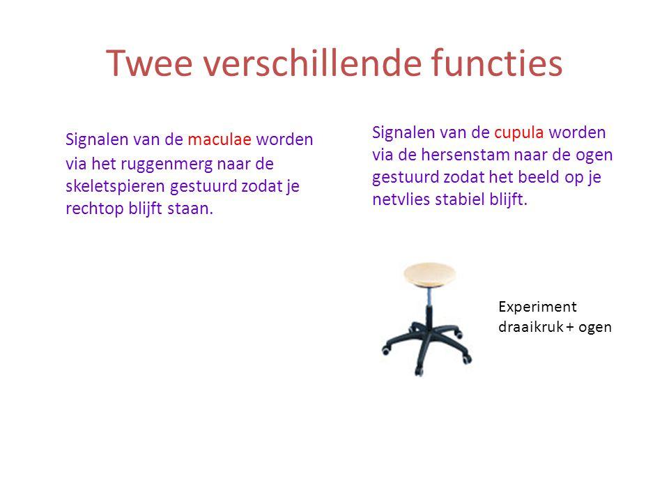 Twee verschillende functies