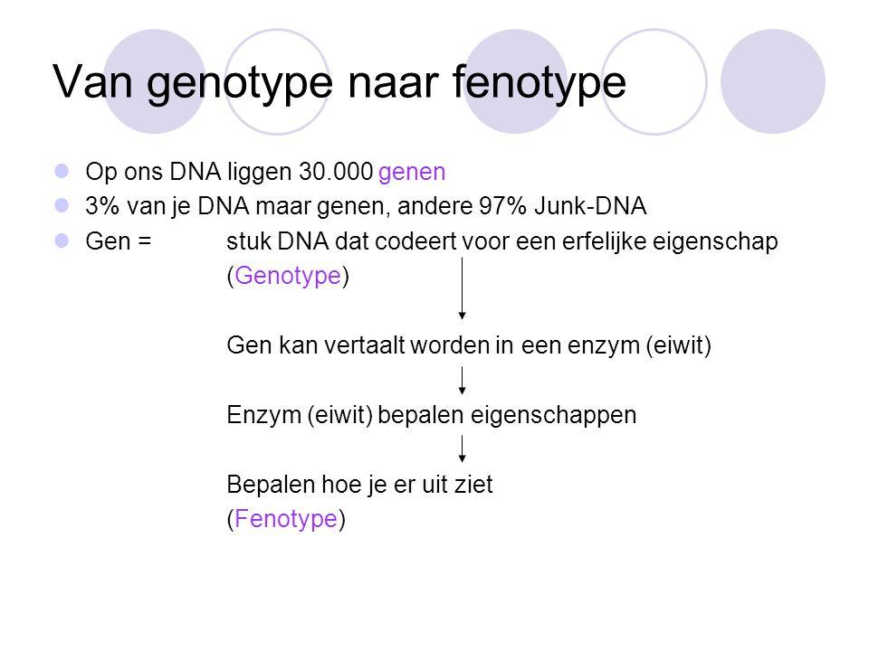 Van genotype naar fenotype