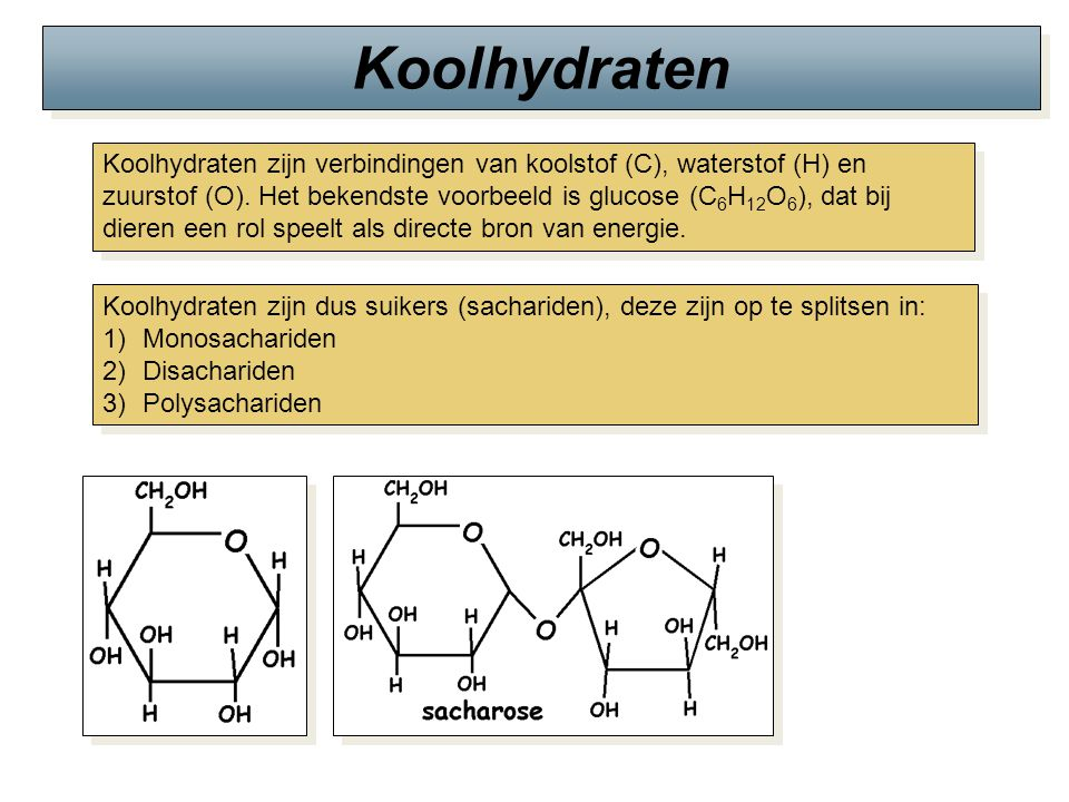 Koolhydraten