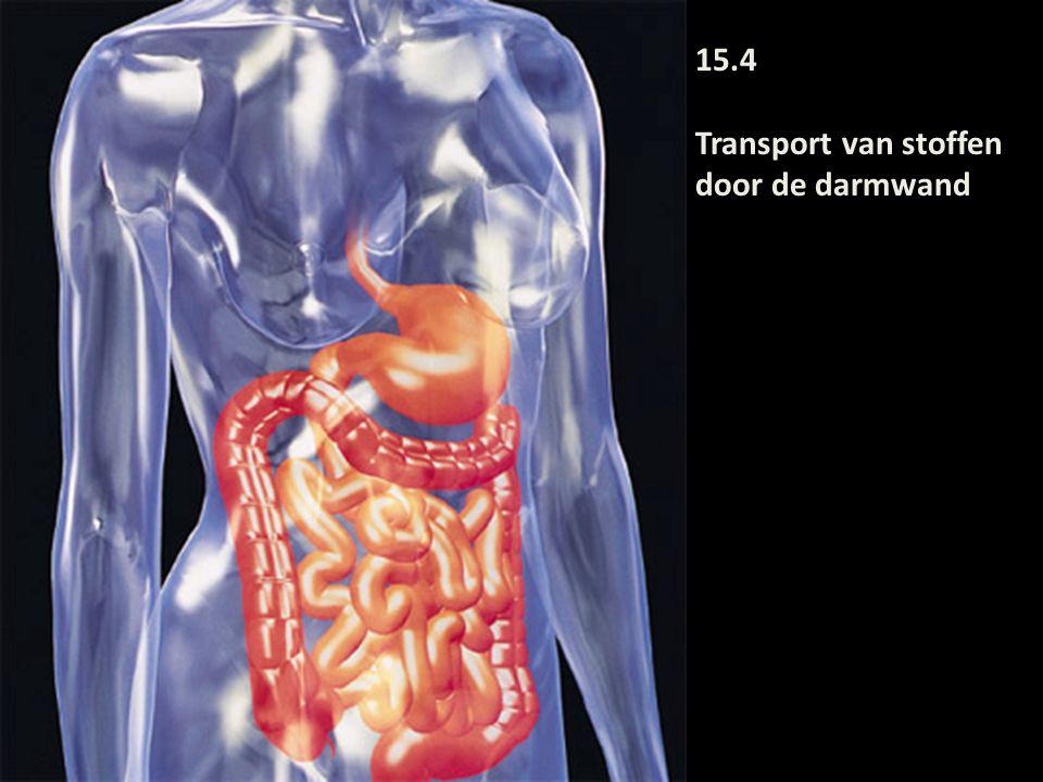 15.4 Transport van stoffen door de darmwand