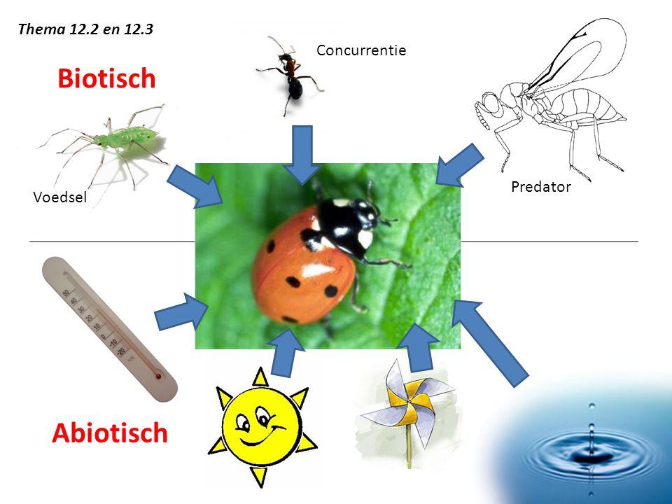 Thema 12.2 en 12.3 Concurrentie Biotisch Predator Voedsel Abiotisch