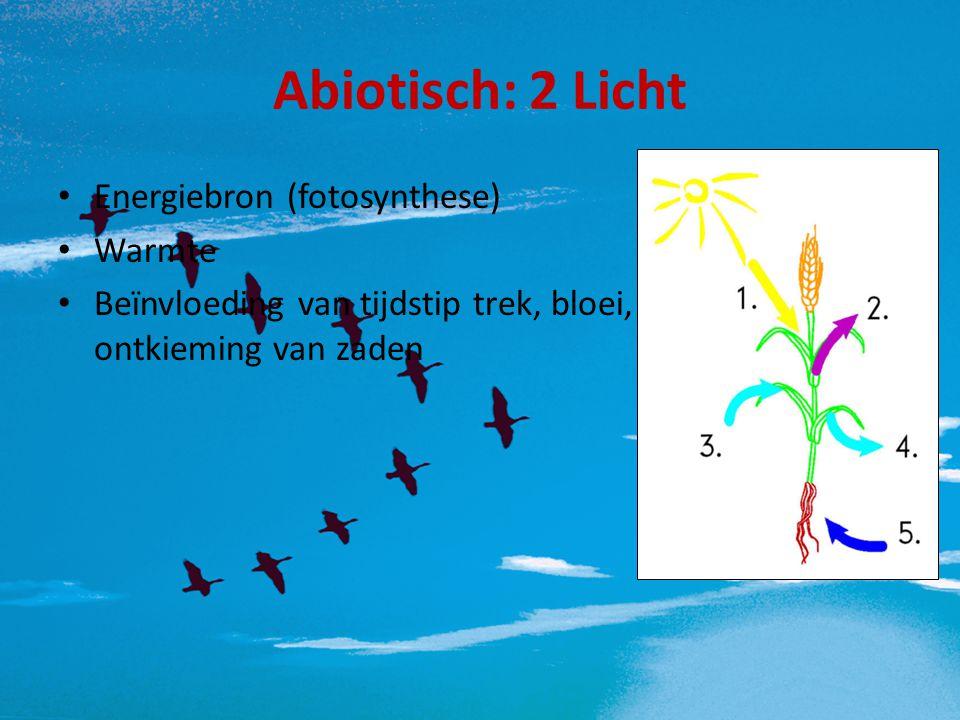 Abiotisch: 2 Licht Energiebron (fotosynthese) Warmte