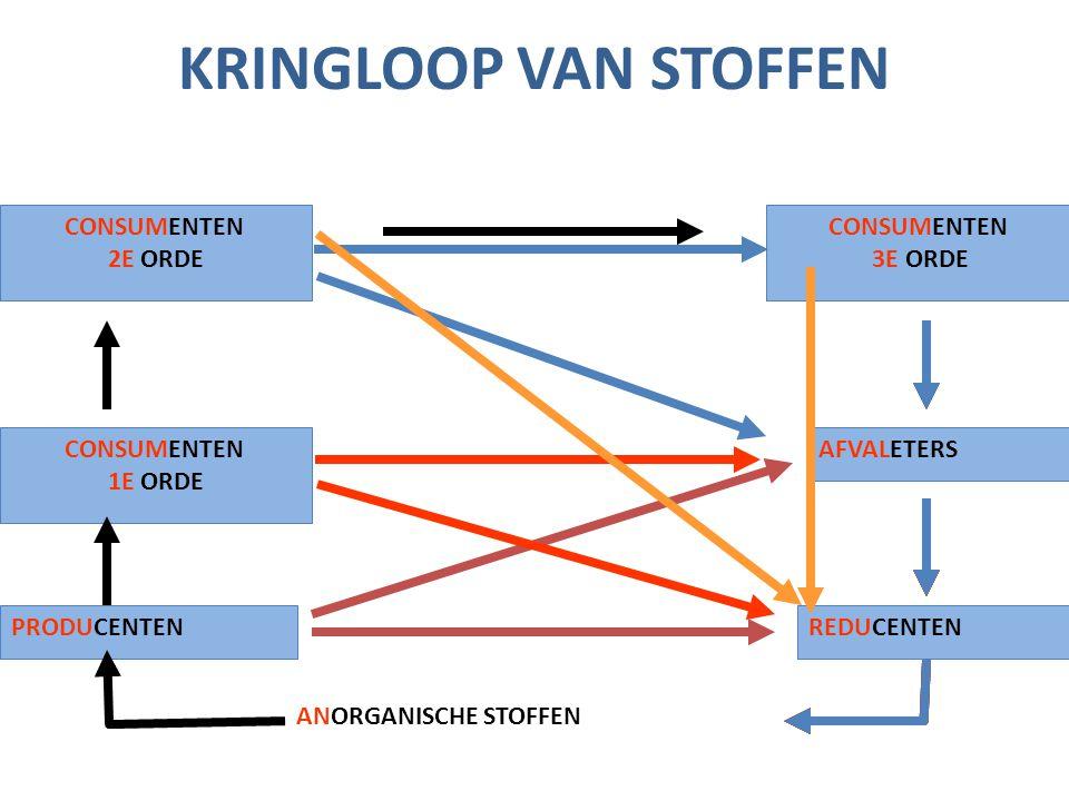 KRINGLOOP VAN STOFFEN CONSUMENTEN 2E ORDE CONSUMENTEN 3E ORDE