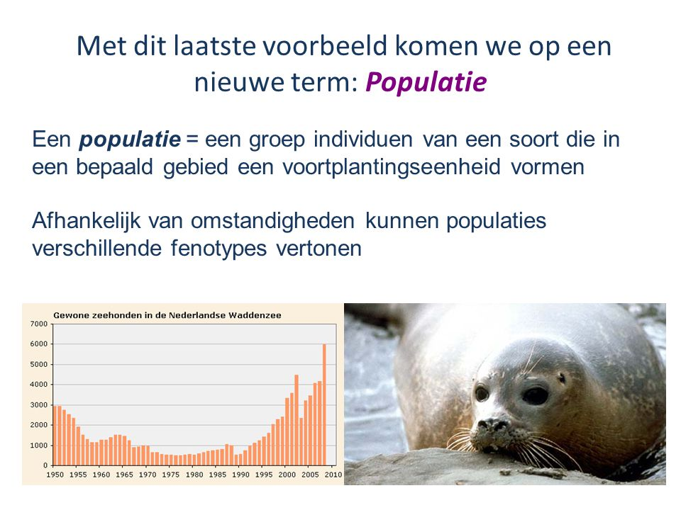 Met dit laatste voorbeeld komen we op een nieuwe term: Populatie