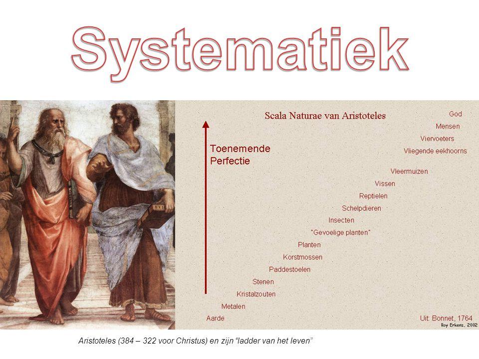 Systematiek