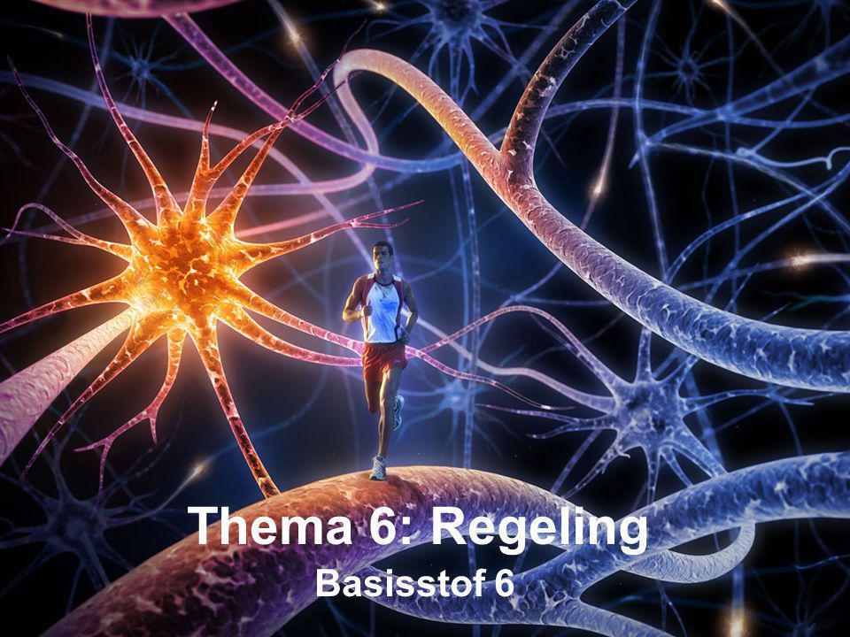 Thema 6: Regeling Basisstof 6