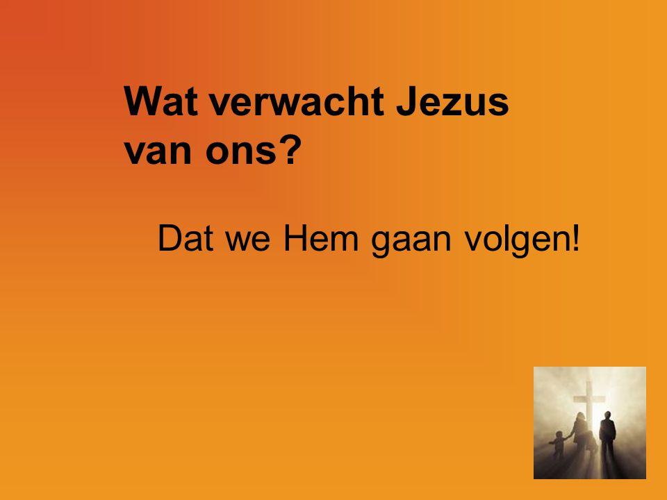 Wat verwacht Jezus van ons
