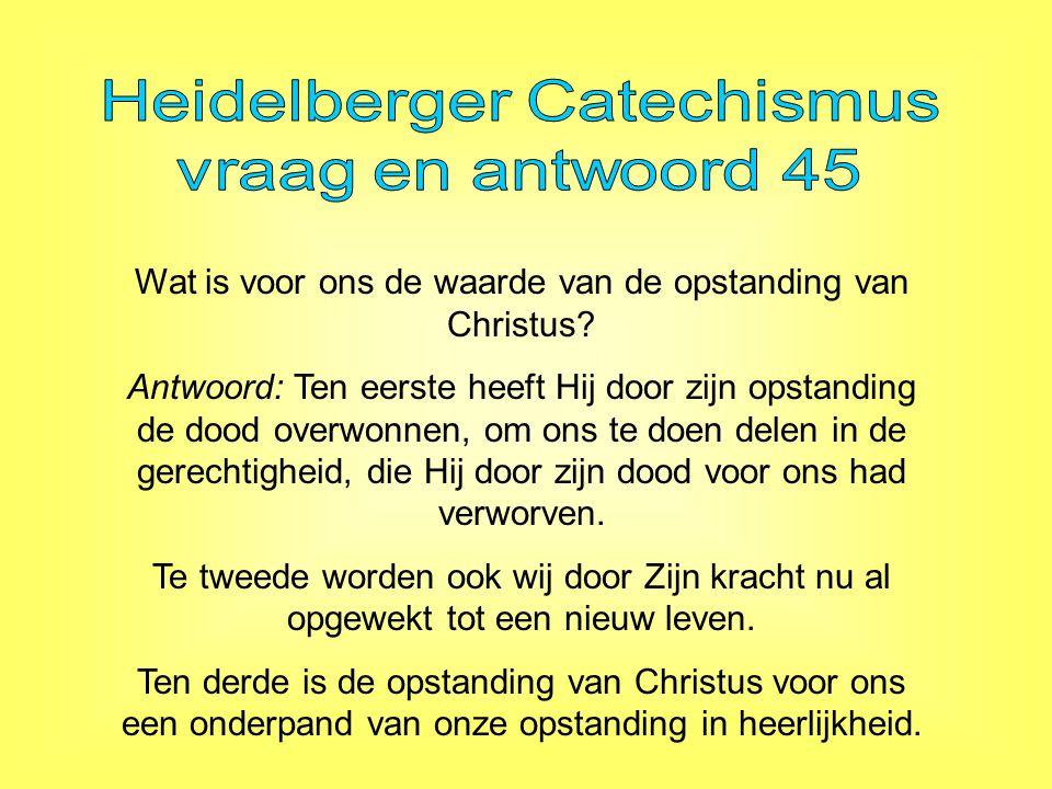 Heidelberger Catechismus vraag en antwoord 45