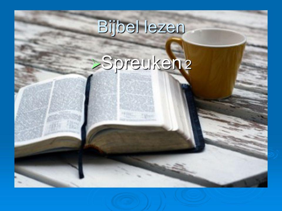 Bijbel lezen Spreuken 2