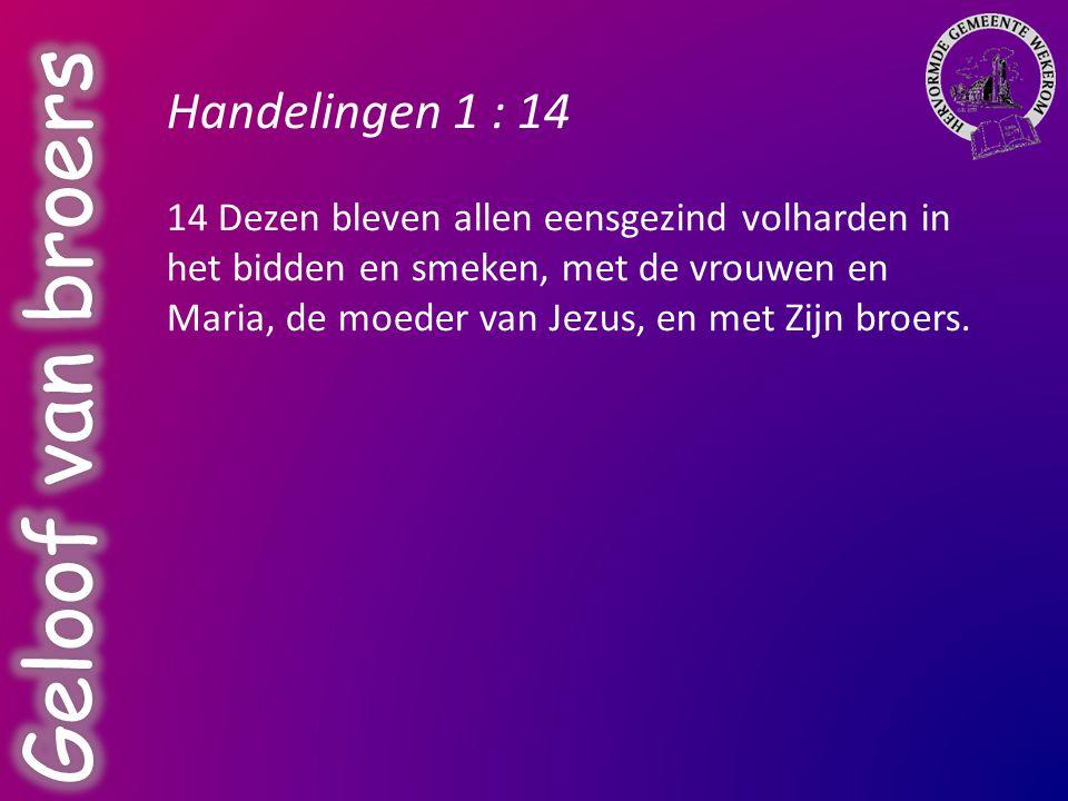 Geloof van broers Handelingen 1 : 14