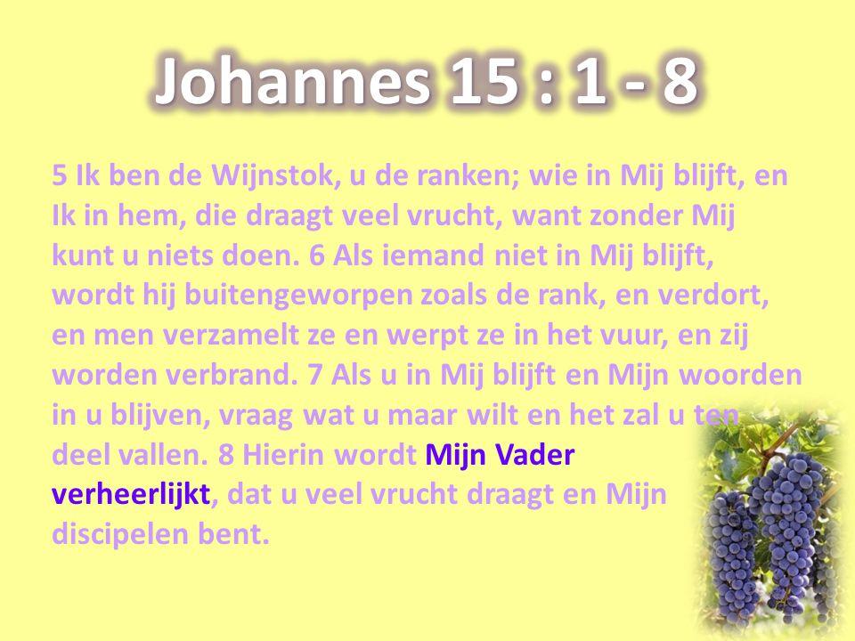 Johannes 15 : 1 - 8