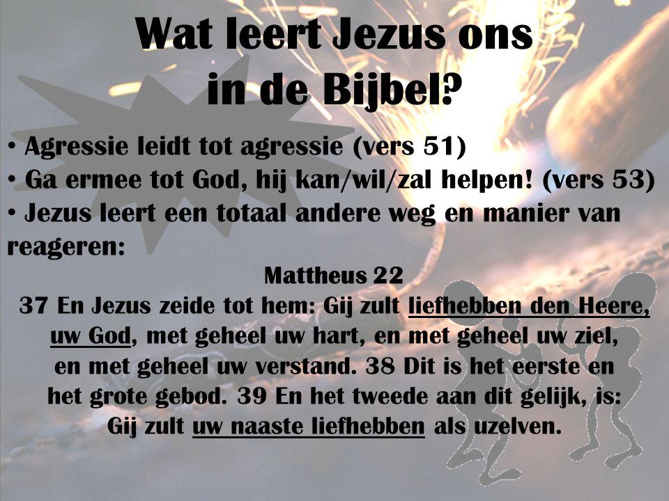Wat leert Jezus ons in de Bijbel