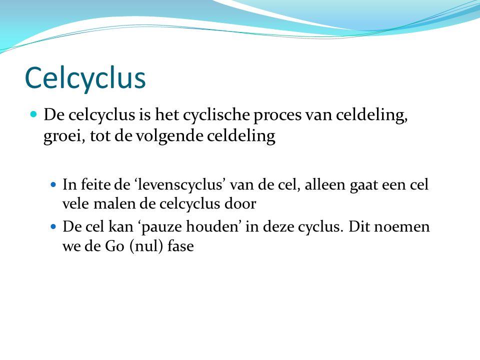 Celcyclus De celcyclus is het cyclische proces van celdeling, groei, tot de volgende celdeling.