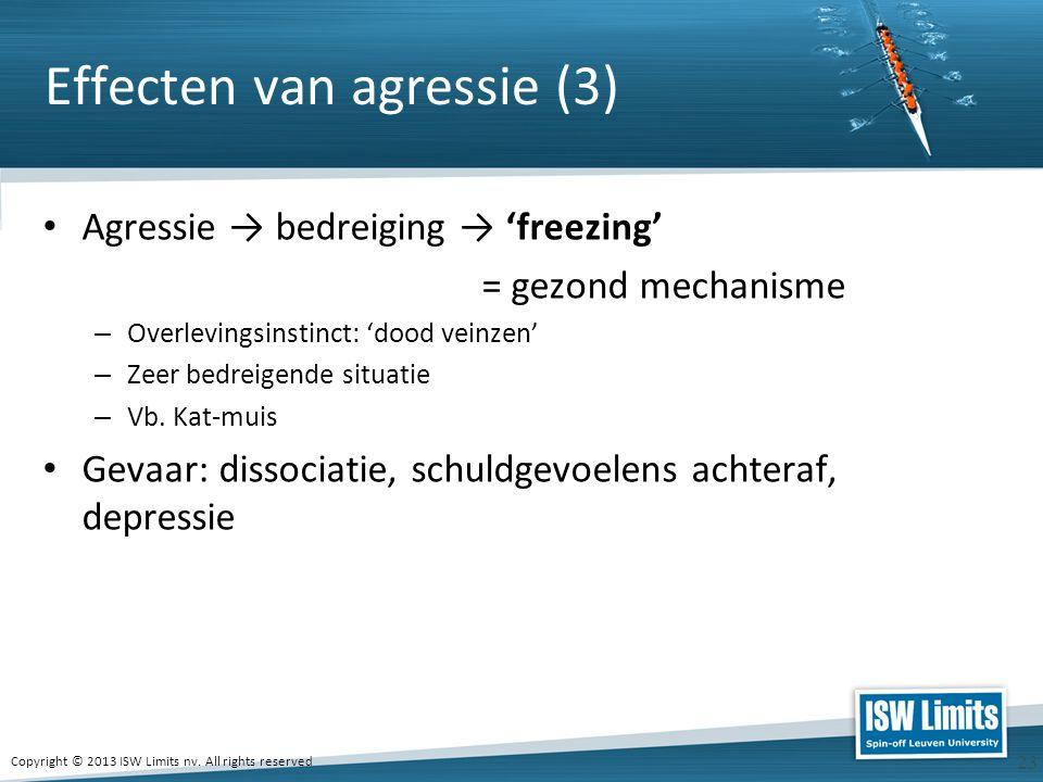 Effecten van agressie (3)