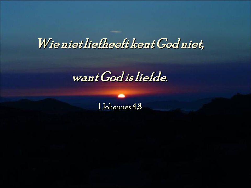 Wie niet liefheeft kent God niet,