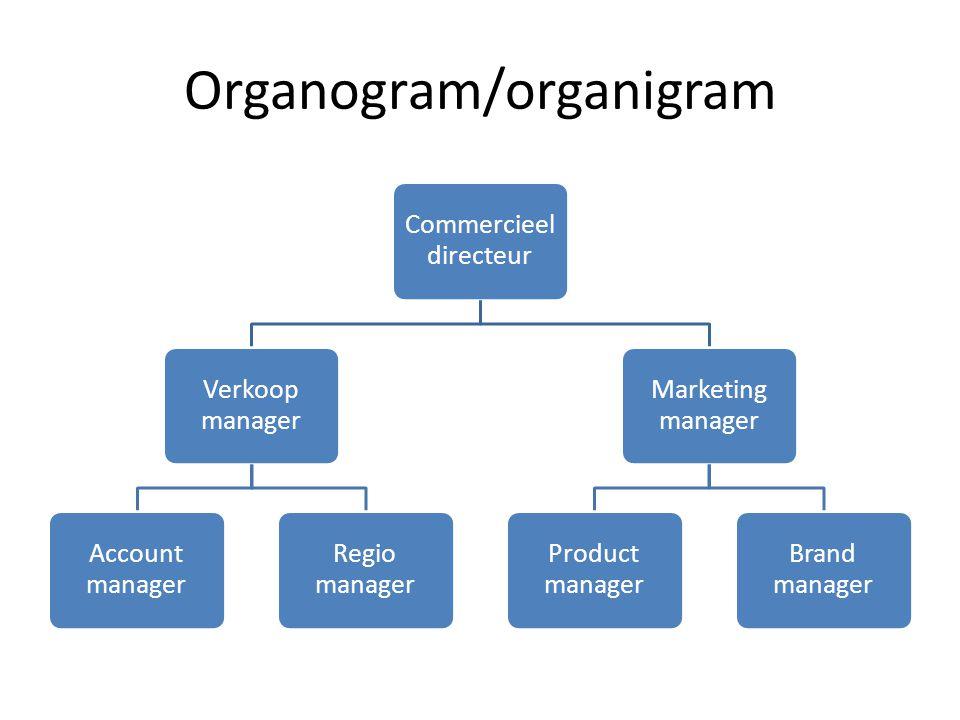 Organogram/organigram