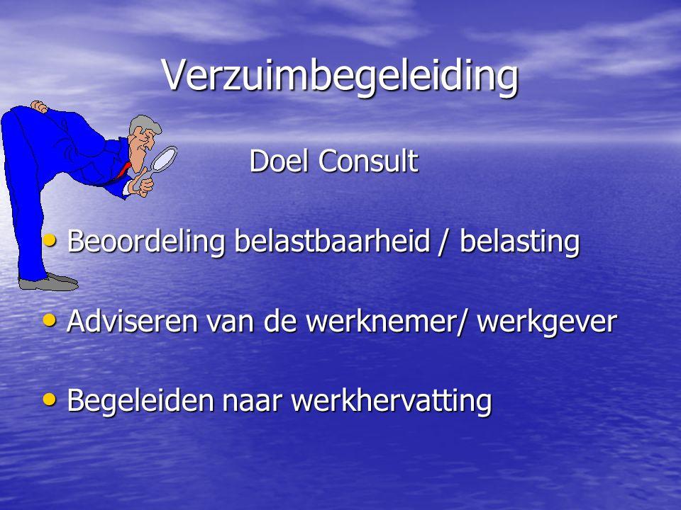Verzuimbegeleiding Doel Consult Beoordeling belastbaarheid / belasting
