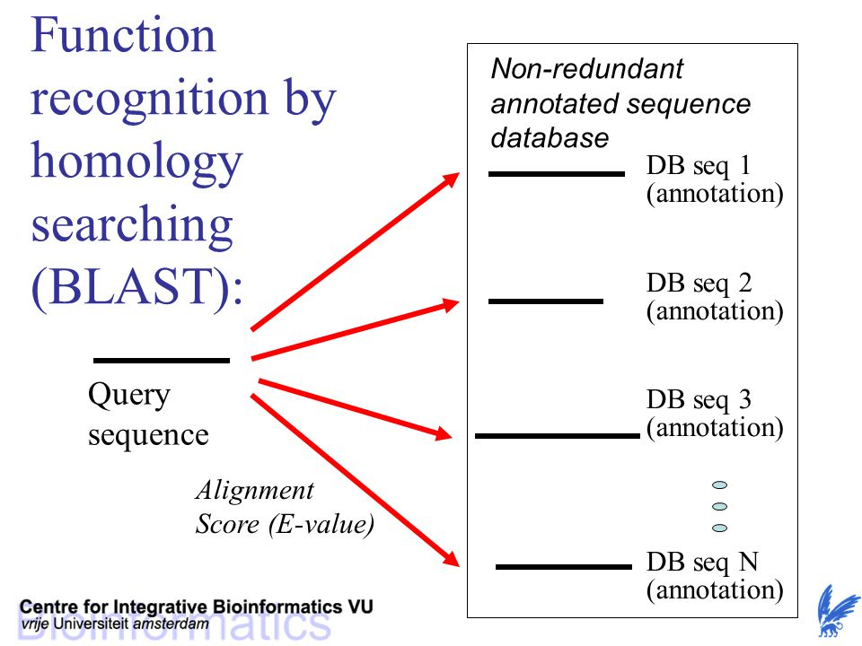 Function recognition by homology searching
