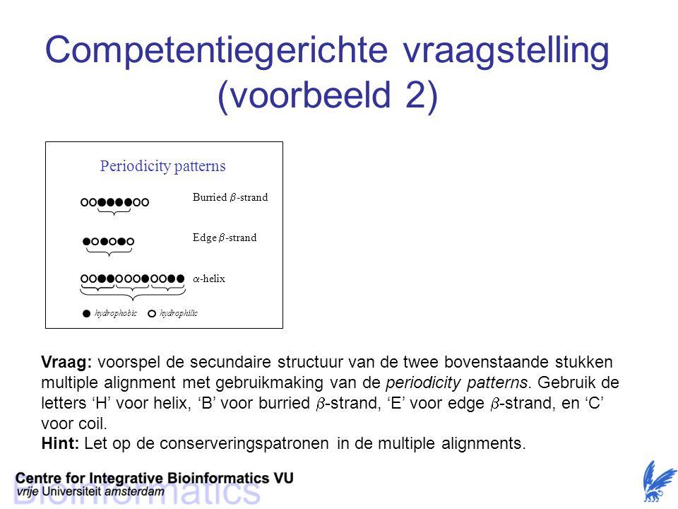 Competentiegerichte vraagstelling (voorbeeld 2)