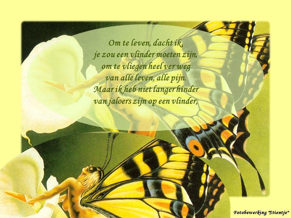 je zou een vlinder moeten zijn, om te vliegen heel ver weg