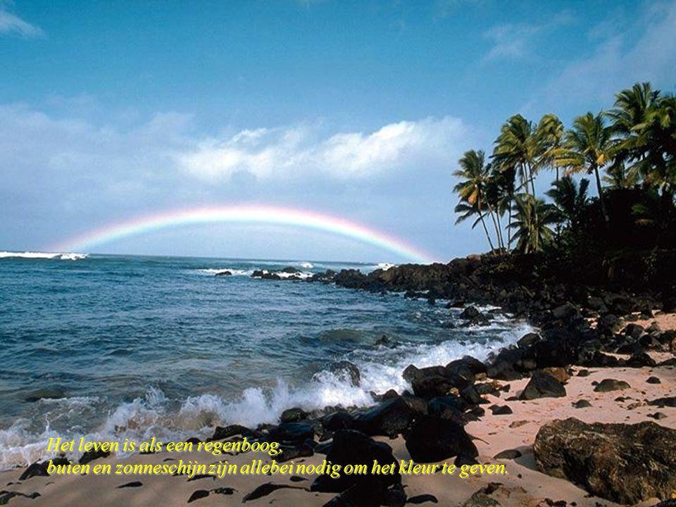 Het leven is als een regenboog,