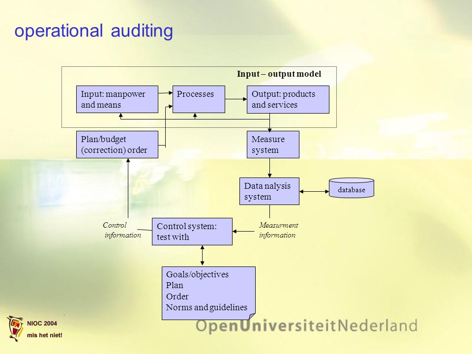 operational auditing Input – output model Input: manpower and means