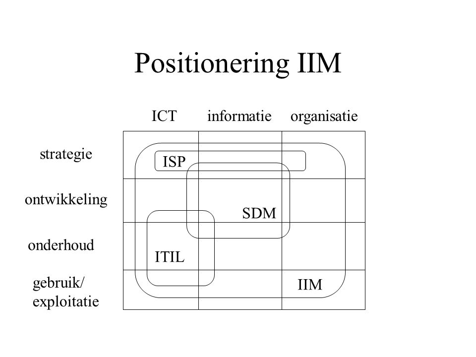 Positionering IIM ICT informatie organisatie strategie ISP