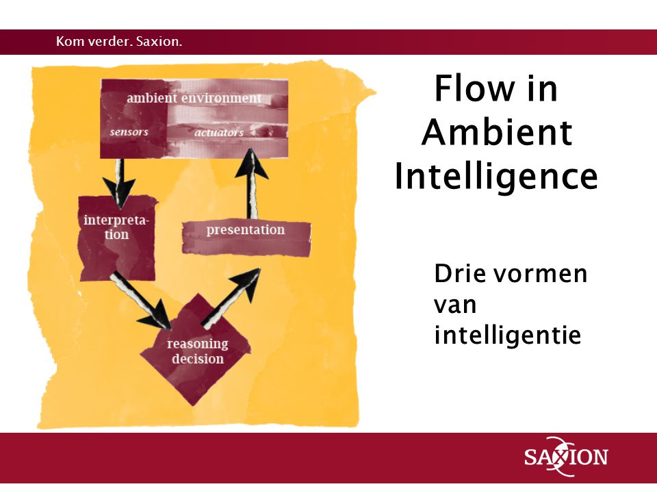 Flow in Ambient Intelligence