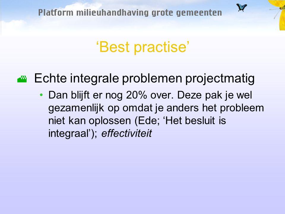 'Best practise' Echte integrale problemen projectmatig