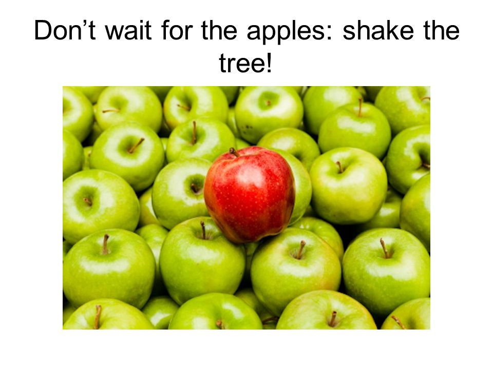 Don't wait for the apples: shake the tree!