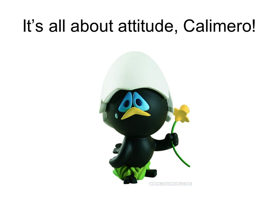 It's all about attitude, Calimero!