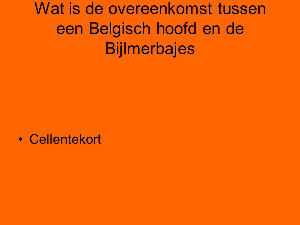 Wat is de overeenkomst tussen een Belgisch hoofd en de Bijlmerbajes