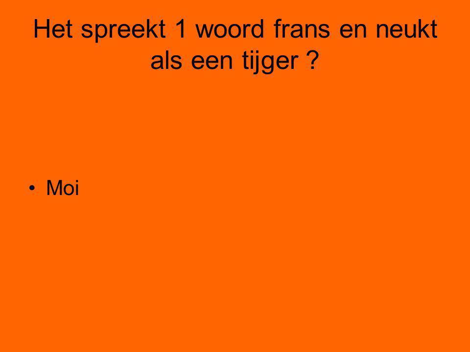 Het spreekt 1 woord frans en neukt als een tijger