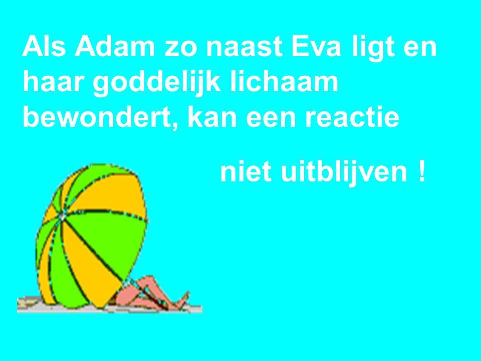Als Adam zo naast Eva ligt en haar goddelijk lichaam bewondert, kan een reactie