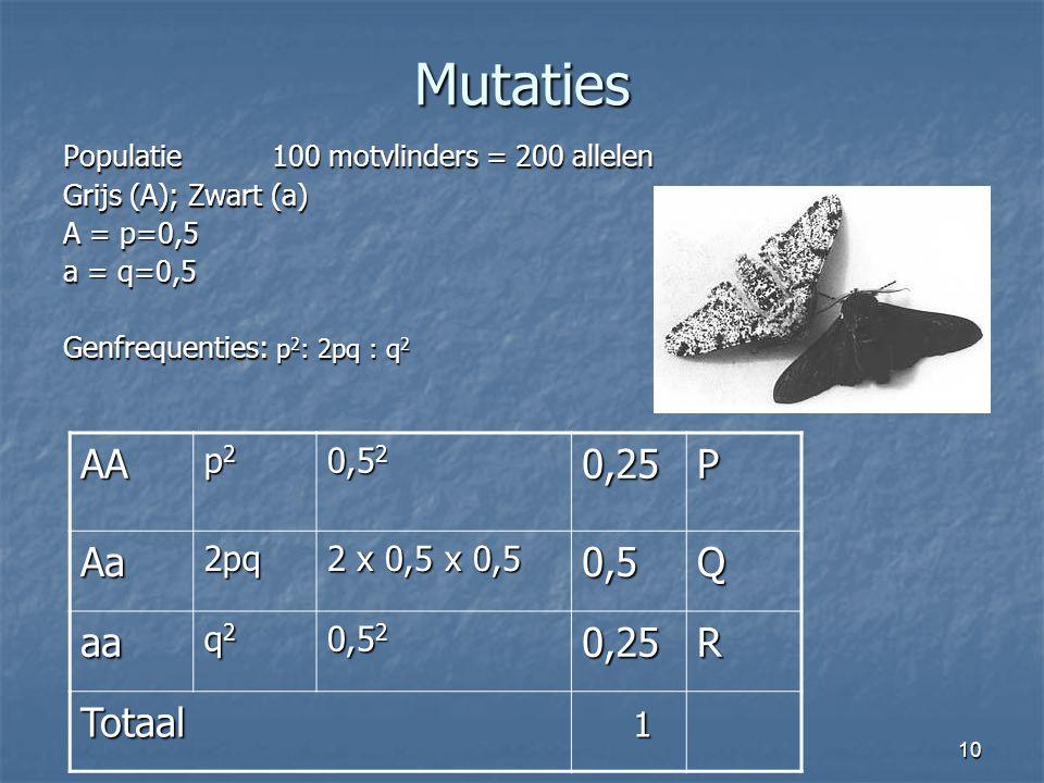 Mutaties AA 0,25 P Aa 0,5 Q aa R Totaal 1 p2 0,52 2pq 2 x 0,5 x 0,5 q2