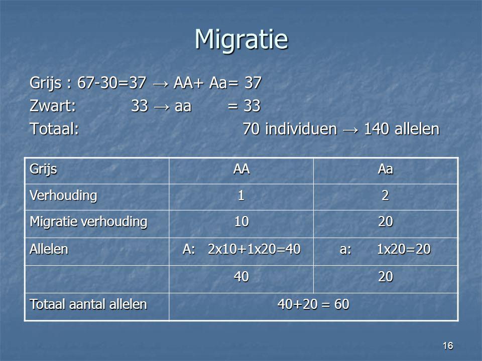 Migratie Grijs : 67-30=37 → AA+ Aa= 37 Zwart: 33 → aa = 33 Totaal: 70 individuen → 140 allelen Grijs.